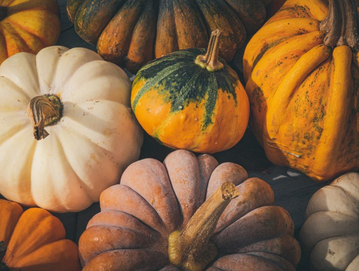 Taste squash differently this fall (recipe!)